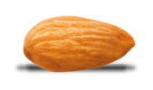 Protéines d'Amande