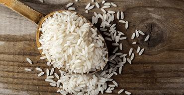 protéines de riz
